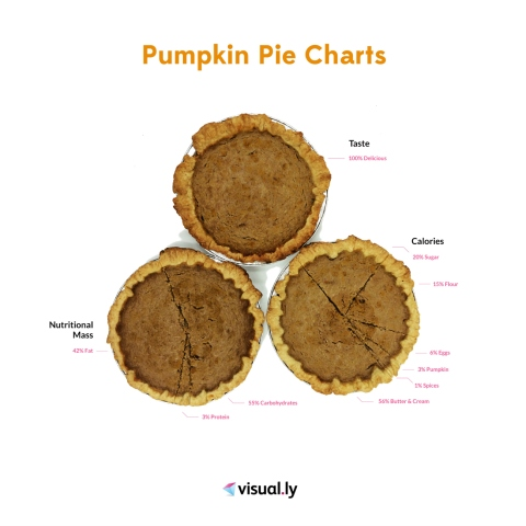 Pumpkin Pie Charts: It's that time of year!! What really is in a pumpkin pie?